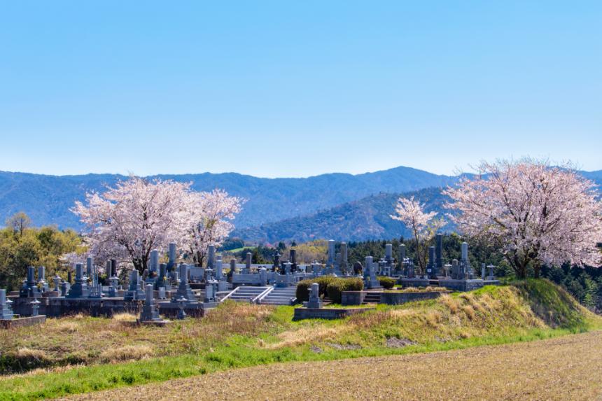 代供養墓、樹木葬、合葬墓が併設されているところも